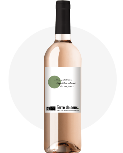 bouteille-terre-de-sens-wine-rose