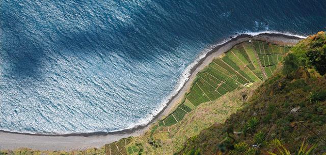 terres-vin-biologique-inrock